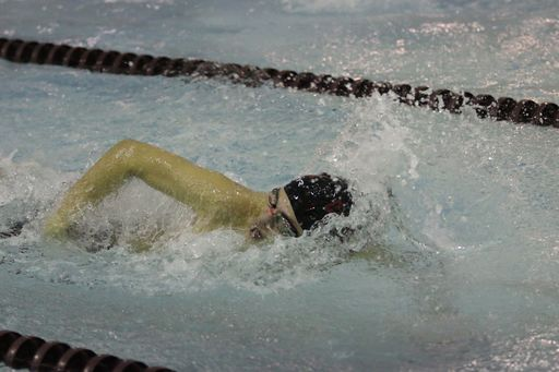 Penobscot Valley Conference Swim Meet at University of Maine Orono - February 9 and 10 2018